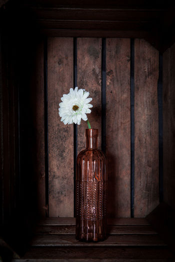 Gerbera flowers in a vase in a vintage looking wooden crate Absence Architecture Brown Day Door Entrance Flower Flowering Plant Fragility Freshness Front View Indoors  Nature No People Plant Simplicity Single Object Vulnerability  Wood Wood - Material Wood Grain