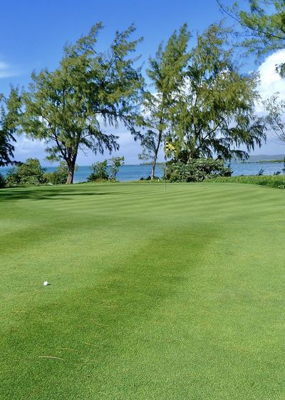 golf course green in front of blue sea, mauritius Amazing Blue Fairway Flag Golf Golf Course Golfball Grass Green - Golf Course Green Color Greenery Horizon Over Water Indian Ocean Landscape Mauritius Nature Outdoors Pantone Colors By GIZMON Scenics Sky Sport Tree Trees Île Aux Cerfs