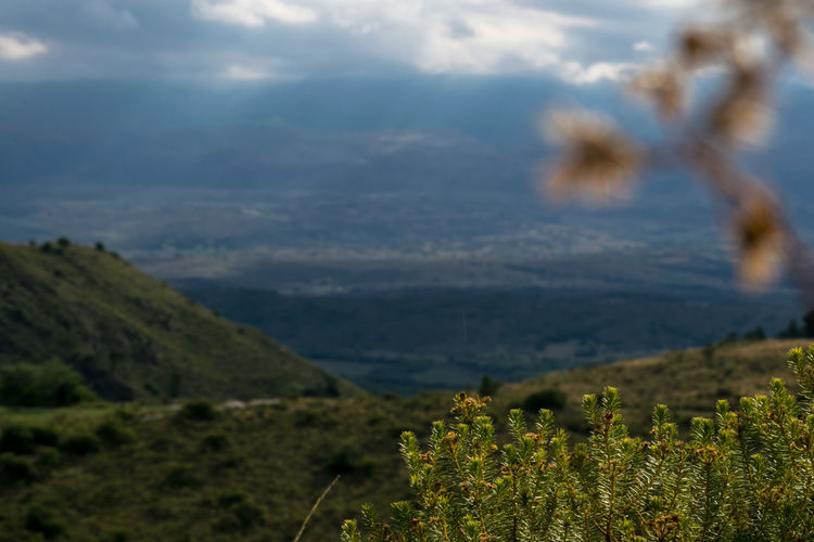 Nikond3300 Argentina Photography Beauty In Nature Blue Sky And Clouds Close-up Cordobaargentina Landscape_photography Nature Nikonphotographer Nikonphotography No People Outdoors Roadtrip Sigma 70-300 Mm. Sigma Lenses
