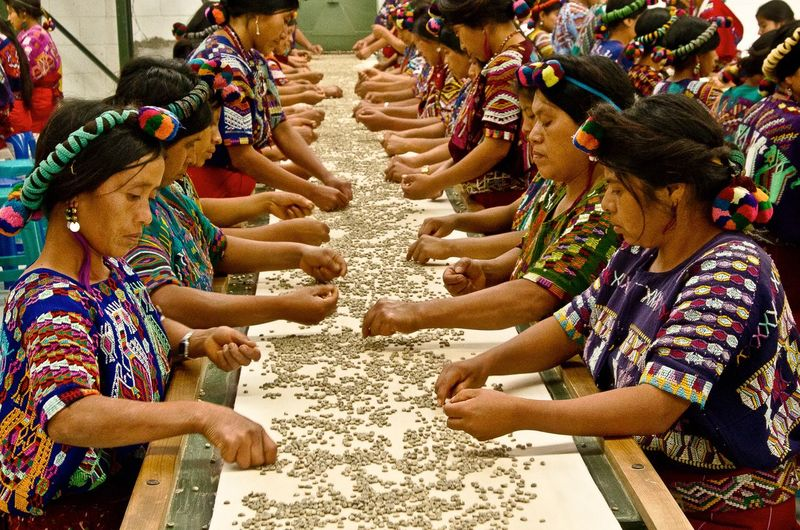 Las que saben Chajul Guatemala 🇬🇹 Emotion Indoors  People Quiche, Guatemala Togetherness Women