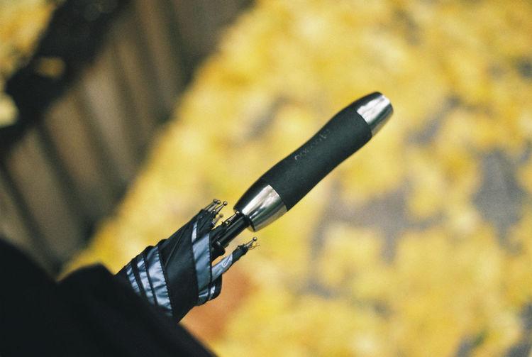 Automobile Fall Fallen Leaves Ginkgo Ginkgo Leaf Rany Day Umbrella Film 35mm Film