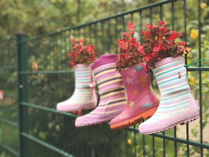 Close-up of plants in boots hanging on fence