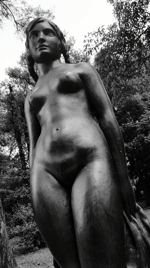 Tree Human Representation Statue Nature Low Angle View Sculpture Outdoors Day No People Branch Sky Beauty In Nature Close-up Nude_model Nudeshoot Blackandwhite Blackandwhite Photography Black And White Collection