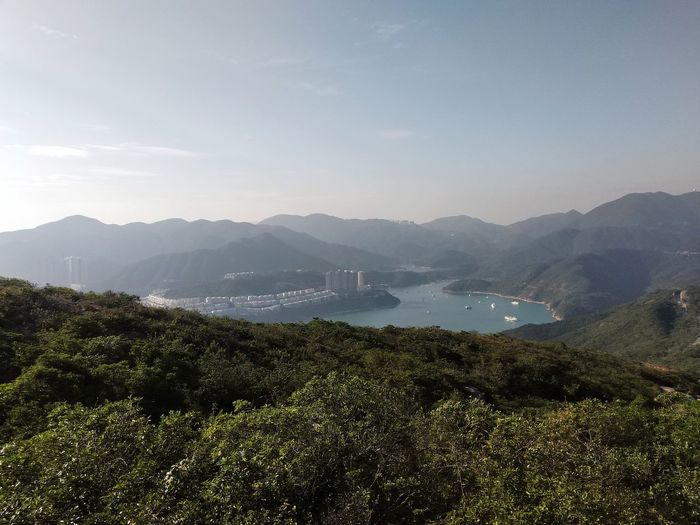 this view is waaaay more awesome than my shot of it ~~ at one of the summits of Dragon's back mountain Throwback Sundown Trees Grass Travel Photography Cloudy HongKong Nature Photography Dragon's Back Mountain Hiking Summit Tree Mountain Water Fog Rural Scene Agriculture Field Sky