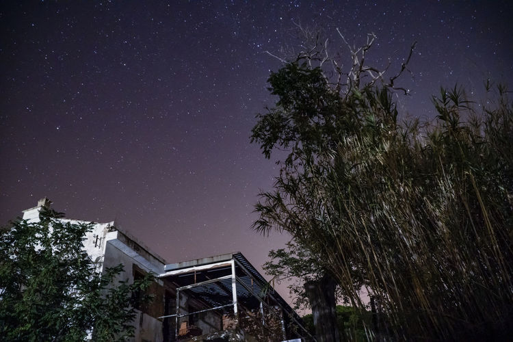 Low angle view of trees and building against sky at night