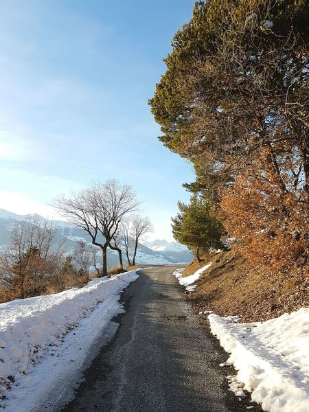 Road to freedom. Tree Nature No People Outdoors Winter Mountain Alps ınto The Wild Winter Day Mountain Roads