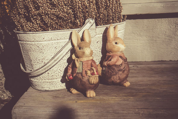 Easter bunnies Animal Themes Brown Brown Eyes Bucket Bunnies Bunny  Cheerful Close-up Decoration Dull Easter Easter Ready Haze High Angle View Holiday No People Old Old-fashioned Still Life Toy Toys Two Animals Vintage Wood Wooden