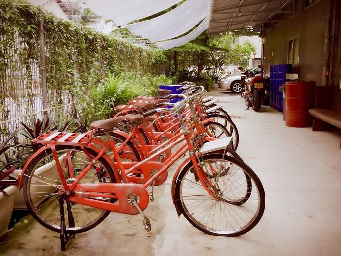 Wheeler's Yard Bicycle Transportation Vintage Nostalgic  Red Wheels Classic Travel Pedal Cycle Kampong Village Transport Red Bicycles Riding Bike Two Wheeler