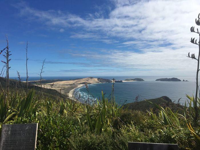 New Zealand Te