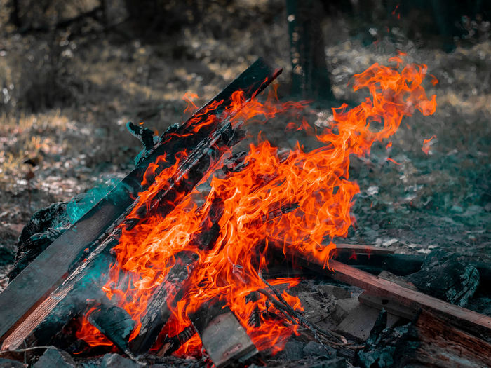 Heat - Temperature Burning Fire - Natural Phenomenon Fire Flame Orange Color No People Day Nature Land Wood Environment Smoke - Physical Structure Outdoors Motion High Angle View Bonfire Wood - Material Field Log Pollution My Best Photo