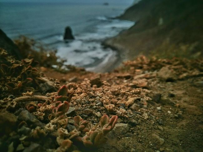 Beach Tranquility Selective Focus Nature Tranquil Scene Non-urban Scene The Week On Eyem Leicacamera Benijo HuaweiP9 Canary Islands Exceptional Photographs Vacations Sand Beauty In Nature My Favorite Place