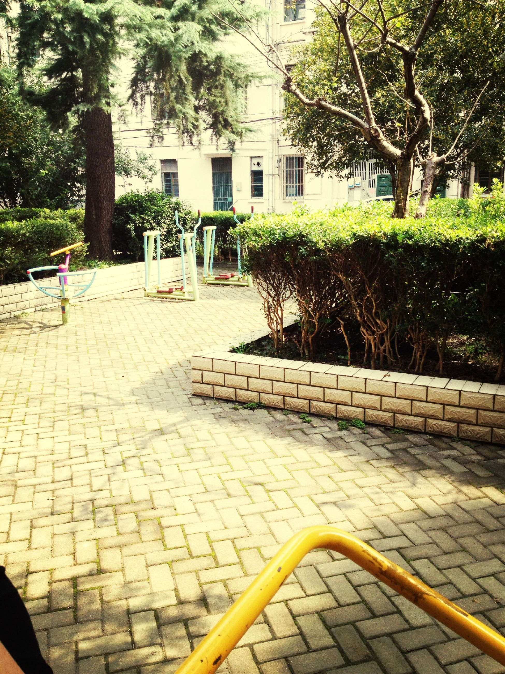 tree, cobblestone, paving stone, bench, footpath, park - man made space, building exterior, built structure, steps, walkway, architecture, growth, railing, sunlight, empty, sidewalk, pavement, outdoors, chair, day