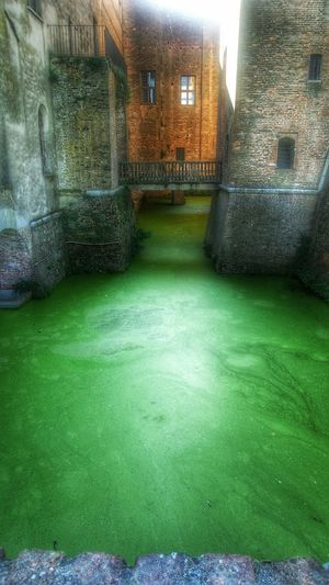 Welcome to the incredible Hulk 's swimming pool! My Lucid Dream Green Green Green!  Check This Out Taking Photos