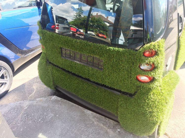 Wald Smart Greencar