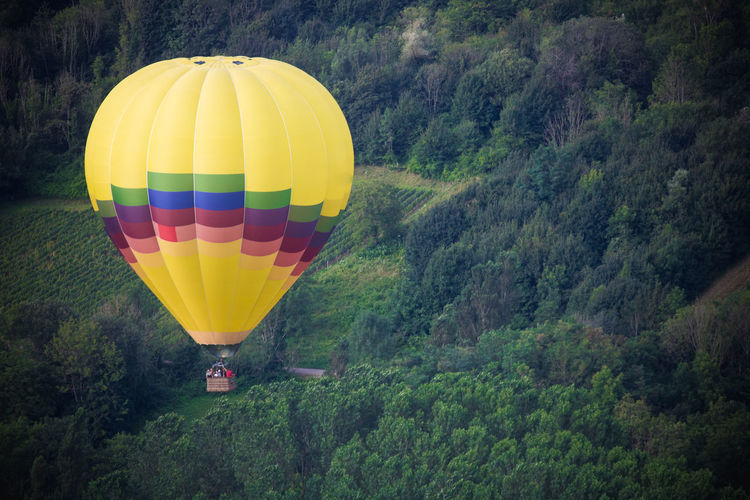 Hot air balloon flying over trees