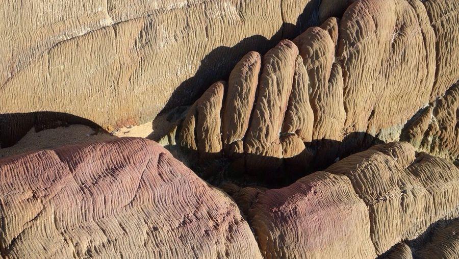 Texture Rocks Seaside Beach Life Is A Beach Australia