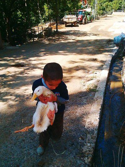 Mutluluk Happy Smiley çocuklukfotoğrafı Duck