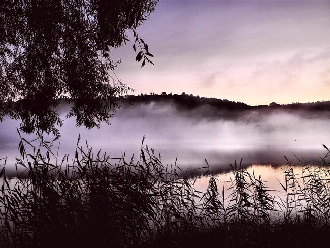 Schalkenmehren Beauty In Nature Day Foggy Morning Nature No People Outdoors Scenics Sky Tranquil Scene Tranquility Perspectives On Nature The Traveler - 2018 EyeEm Awards