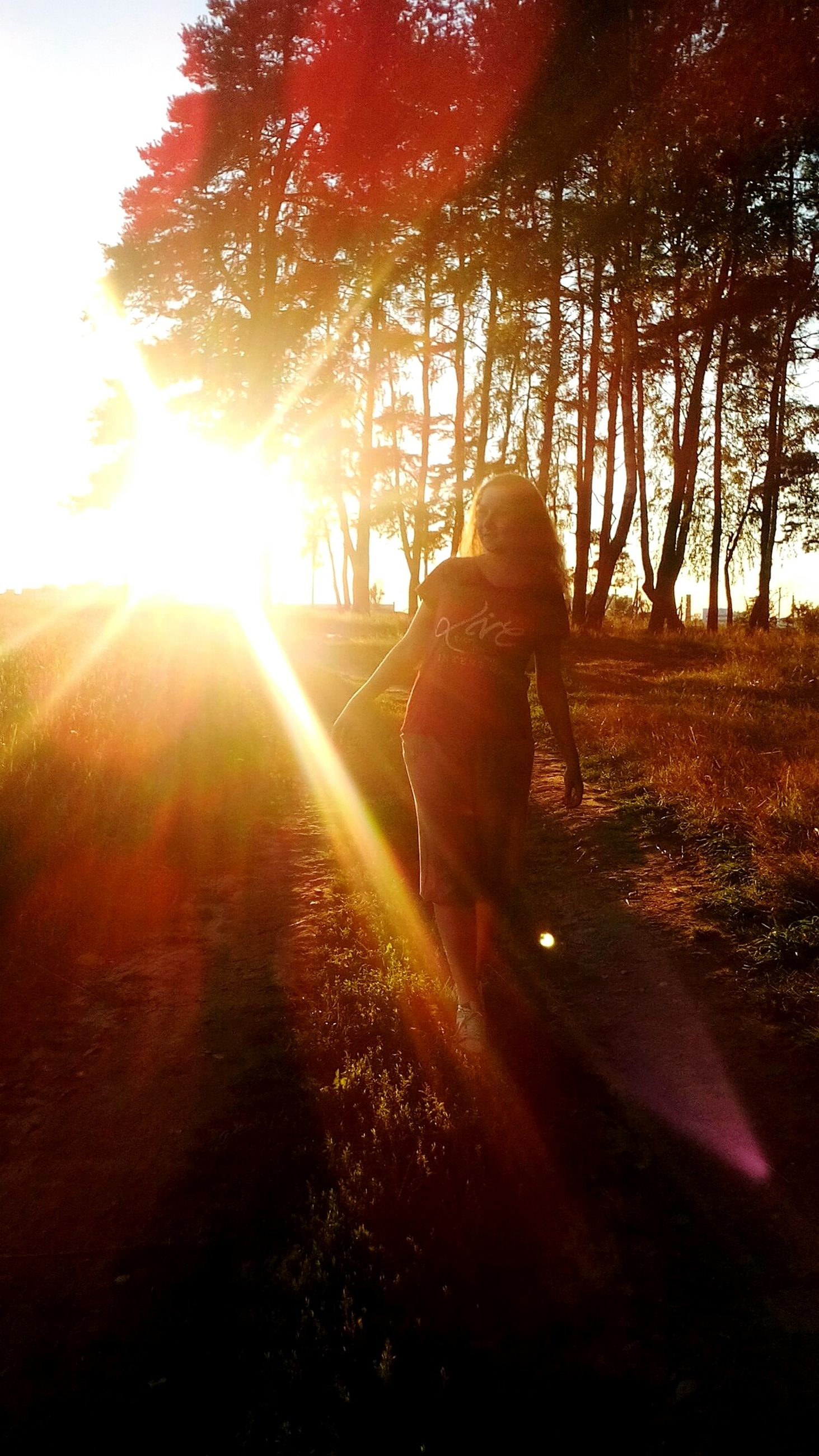 sun, sunset, sunbeam, sunlight, lifestyles, lens flare, leisure activity, tree, nature, tranquility, beauty in nature, tranquil scene, orange color, sky, back lit, outdoors, scenics, landscape, growth, bright, idyllic, sunny, non-urban scene, plant, grass, casual clothing