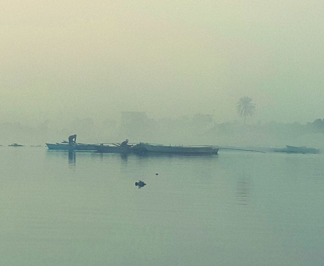 Fog Nature