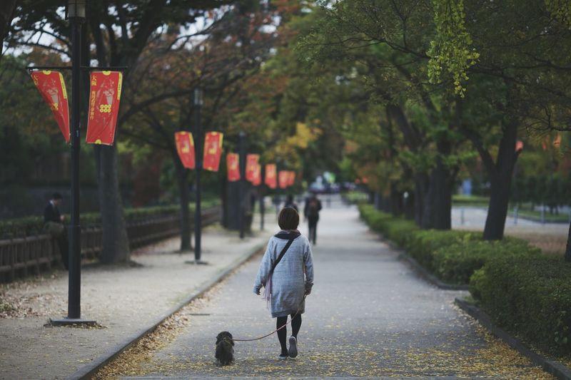 Woman walking dog on footpath