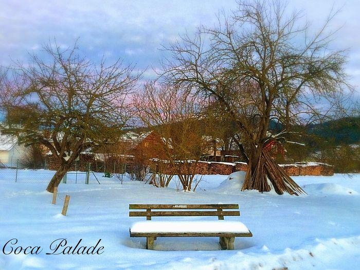 Winter Wintertime Winter Wonderland Melancholic Landscapes Wege Und Strassen IPhone Landscape Winterwonderland Austria Landscape_Collection
