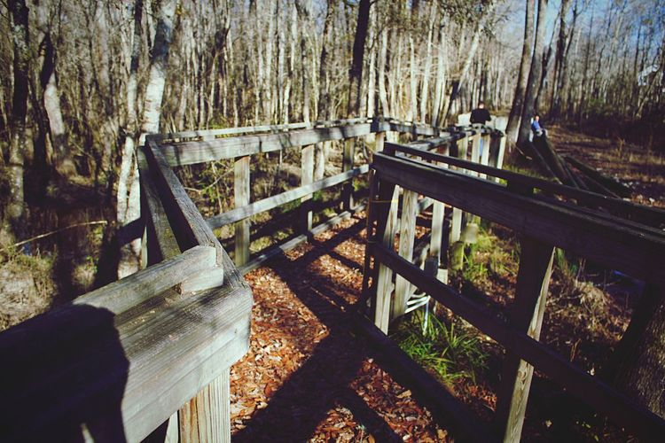 Old wooden bridge Wood Wood - Material Wooden Woods Wooden Texture Bridge Bridges Bridge - Man Made Structure Old Bridge Fragile Forest Forest Path Swamp Swamp Forest Eyeem Photography Myrtle Beach SC