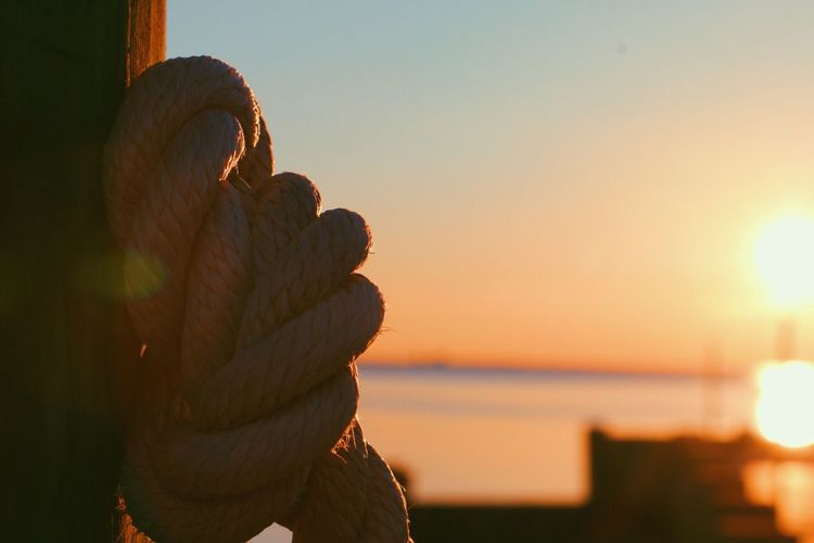 Sunset Sky Close-up Outdoors Day Scenics Wood Dailyphoto Canon Canonphotography Focus On Foreground Rope Dock Finding New Frontiers
