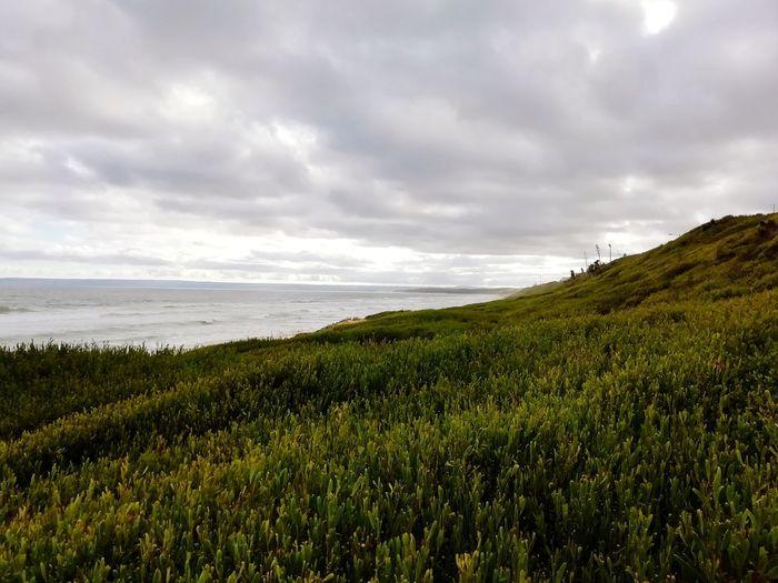 Coastline Rural