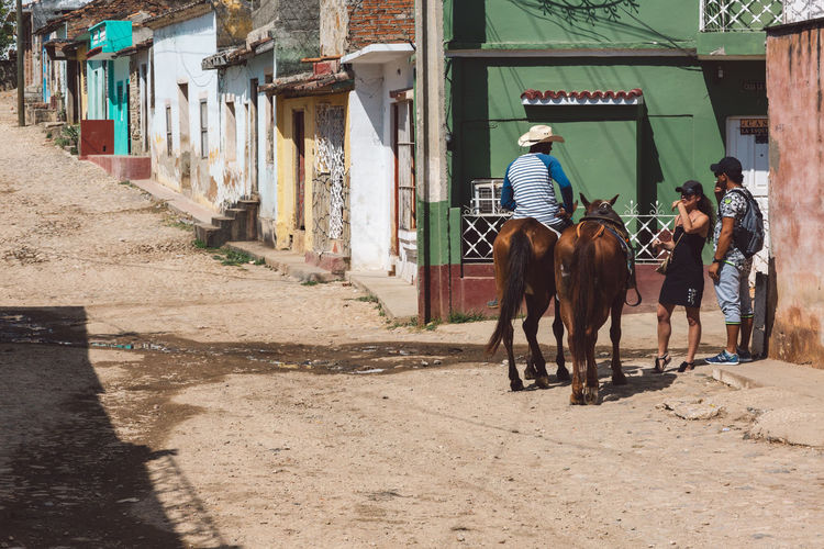 Rear view of people riding horse on building