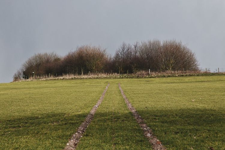 Leading Lines Landscape Outdoors Green Color No People Day Tree Grass Sky Nature