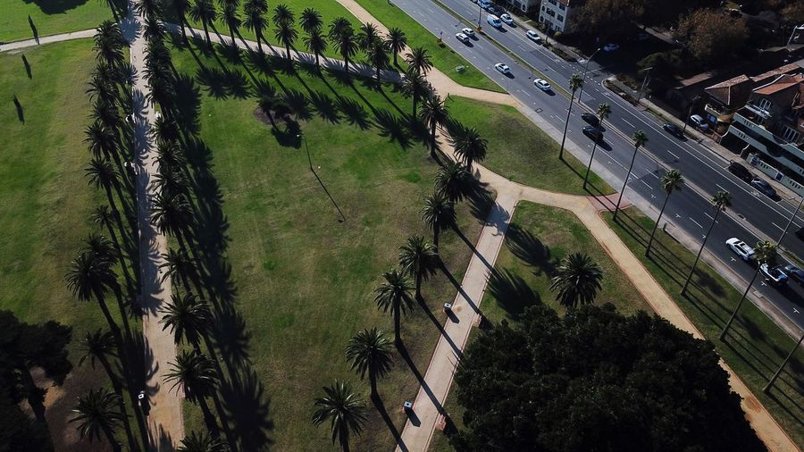 Aerial Aerial View St Kilda Australia Lines And Shapes Design Pattern In A Row Shadows & Lights Path Pathway Melbourne Plant High Angle View Tree Nature Growth Day Outdoors Grass Green Color Built Structure Architecture City Sport Sunlight Shadow Road Street Field