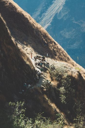 The Choquequirao Trek - Cusco/Apurímac, Perú Travelphotography Travelling Trek Trekking Choquequìrao Cusco Sunlight Nature Day Plant Water No People High Angle View Outdoors Beauty In Nature Scenics - Nature