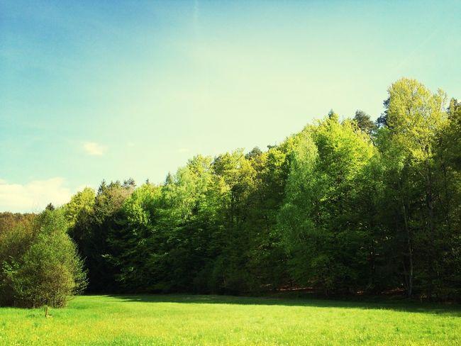 Nature ein Tag in der Rhön Sky Sunshine