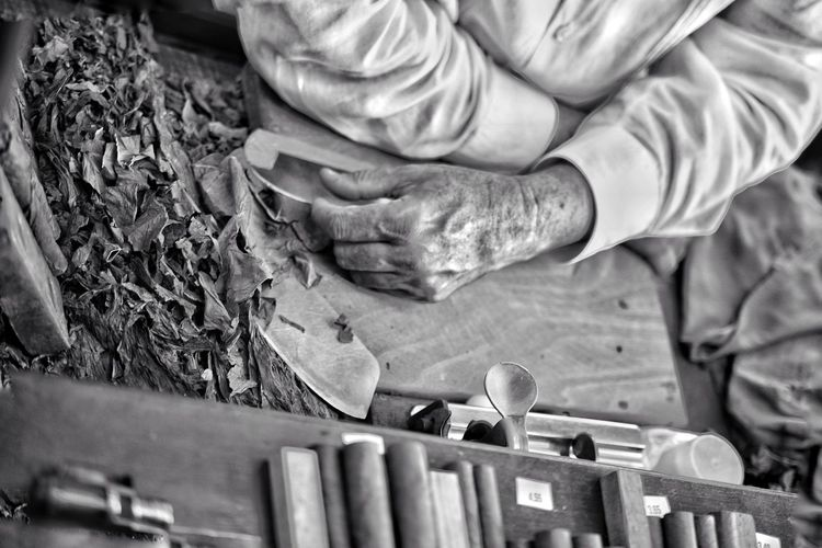 Human Hand Working Real People Skill  Close-up One Person Manual Worker Workshop Cuba Cuban Cigar Cigar Making Rolling Old Hands Weathered Blackandwhite Tobacco Tourism Communism