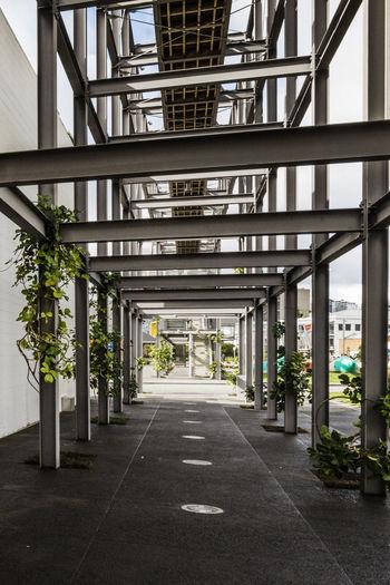 Empty Walkway In City