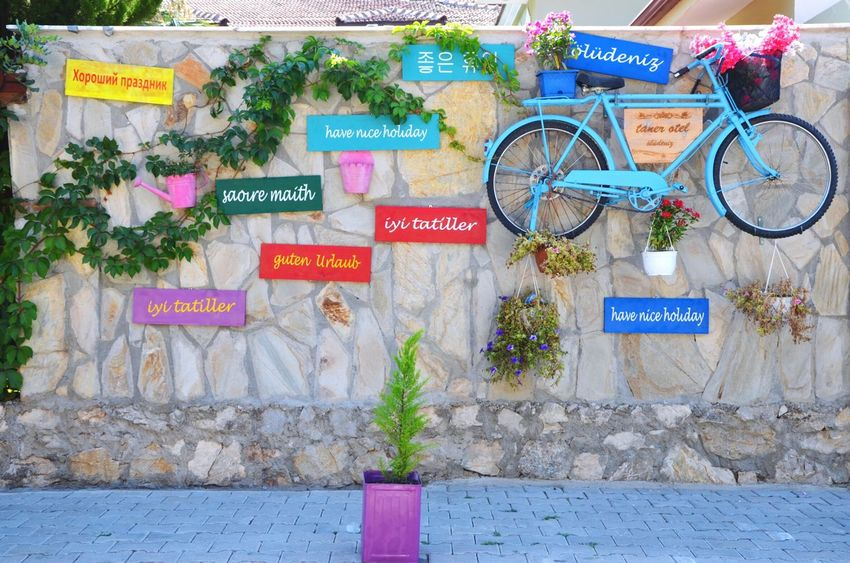Taken in Ölüdeniz Holiday Vacation Summer Turkey Wall Art Wallart Creativity Colorful Wall Bicycle Colors Signs Flowers Flowerpot Bike Plant Words Tree Pavement Sidewalk Streetphotography Street Photography The OO Mission EyeEm Diversity