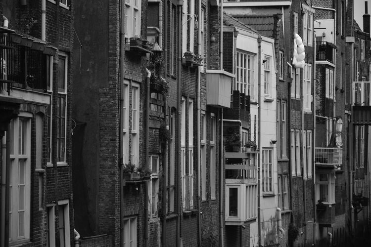 | canal houses | Dutch Houses Stone Wall Stone House House Facade Facades Windows Doors Balcony Old Houses Gracht Waterstreet Dordrecht Netherlands Holland Backside Balcony Backside Canal Canal Houses Blackandwhite Houses And Windows Monochrome Black And White Urban Dutch Architecture