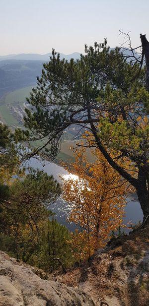 No People Outdoor Photography Stones & Water Elbe River Tree Water Sea UnderSea Sky Landscape