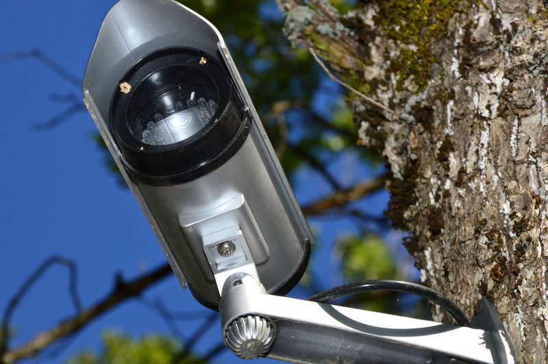 Low angle view of electric lamp against trees