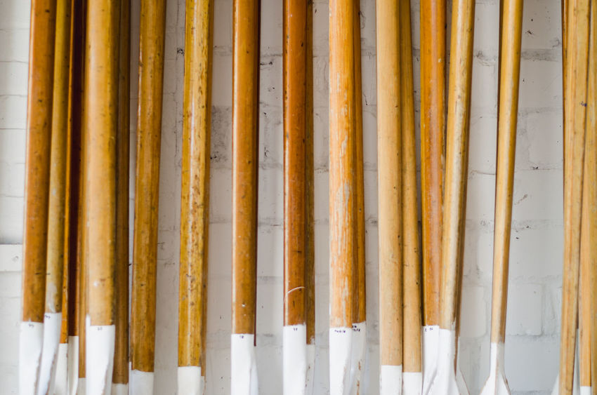 Canoeing Rowing Backgrounds Bamboo - Plant Built Structure Close-up Group Of Objects In A Row Indoors  Large Group Of Objects Multi Colored No People Paddle Pattern Pencil Side By Side Silver Colored Still Life Wood - Material Yellow