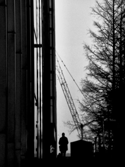 Silhouette man by bare tree against sky in city