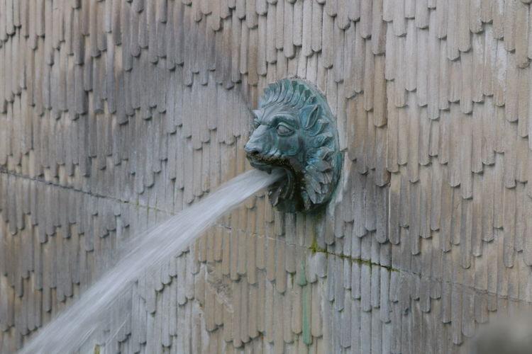 Lion head fountain on wall