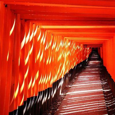 Fushimi Inari Shrine(伏見稲荷大社) Shrine Kyoto Japan Inari Architecture