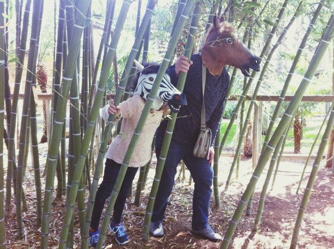 Photography In Motion Walking Around Couple Family Jungle Plant Garden Plants Hanging Out FUNNY ANIMALS Funny Faces Fun Times Fun Full Length Animal Themes Animal Head  Mask