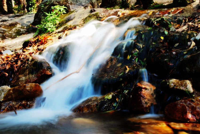 Protecting Where We Play Nature Waterfall River Life Water Is Life