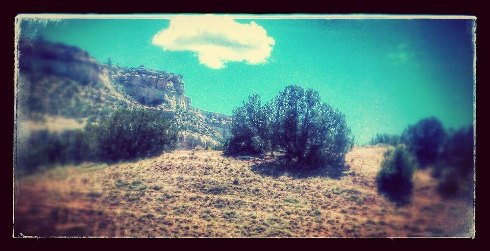 On The Road Desert Beauty Southwest <3 Landscape