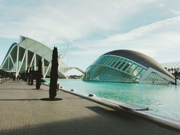 Valencia, Spain Valenciagram Valencia✌ Architecture Architecture_collection Architecturelovers Calatrava Calatravaarchitecture Calatrava Style White Water Water Reflections Trees Sky Trees And Sky Relaxing Beautiful Places Beautiful Places Around The World SPAIN Clever