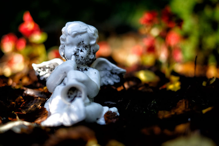 Cemetery Death Close-up Day No People Putto Putto Statue Sculpture Selective Focus Statue