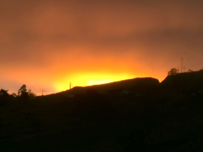 Forest Fire Tree Sunset Tree Area Silhouette Accidents And Disasters Mountain Lava Heat - Temperature Dramatic Sky